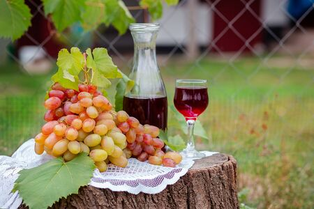 Arrangement in the garden with blue and green grapes, a glass of red drink and a bottle. Still life with fruit. Stockfoto - 130072877