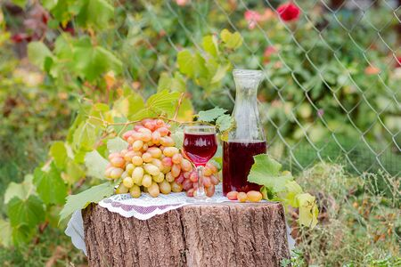 Arrangement in the garden with blue and green grapes, a glass of red drink and a bottle. Still life with fruit. Stockfoto - 130072878