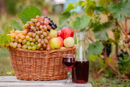 Arrangement in the garden with blue and green grapes, a basket, a glass of red drink and a bottle on the table against the background of the garden. Still life with fruit. Stockfoto - 130072879