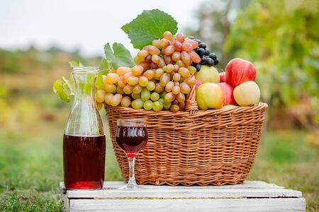 Arrangement in the garden with blue and green grapes, a basket, a glass of red drink and a bottle on the table against the background of the garden. Still life with fruit. Stockfoto - 130072885
