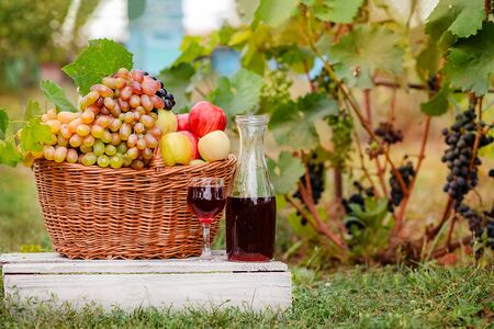 Arrangement in the garden with blue and green grapes, a basket, a glass of red drink and a bottle on the table against the background of the garden. Still life with fruit. Stockfoto - 130072881