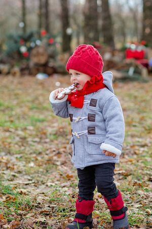 Little boy plays and eats cookies outdoors in a park. Children play outside on a frosty day. Fun outdoors for a family Christmas break. Foto de archivo