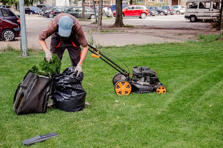 Mowing a household garden lawn with black bag of grass clippings. Worker collects mowed grass in black plastic bags on a recently trimmed lawn