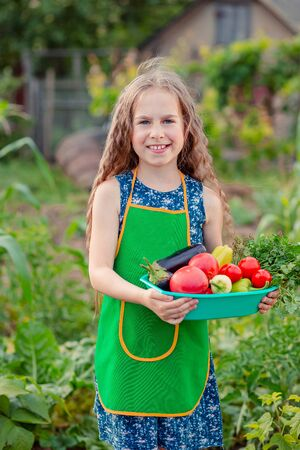 Bambina sveglia in giardino con un raccolto di verdure mature. La ragazza raccoglie in giardino un raccolto di pomodori biologici maturi. Archivio Fotografico