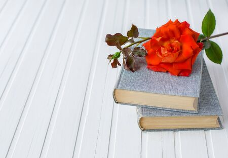Red rose flower over open book on white wooden background, romantic and love, space for your message. Archivio Fotografico