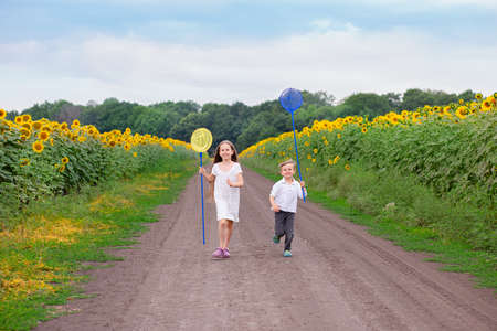 Outdoor portrait of young children running with a butterfly net along the road between the fields.