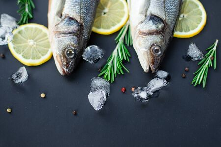 Raw fish sea bass with spices and herbs on black slate table. Fresh sea bass. Top view with copy space.