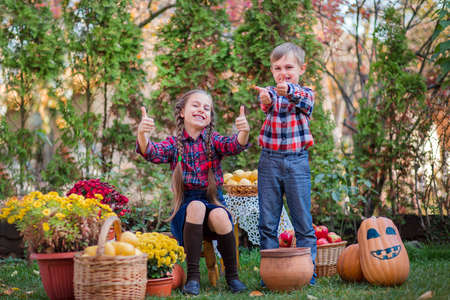 Brother and sister play in the Autumn Garden, surrounded by fruits of vegetables and fruits. Celebrating the Autumn Harvest. 免版税图像