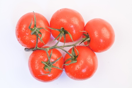 branch with red and fresh tomatoes on a white background