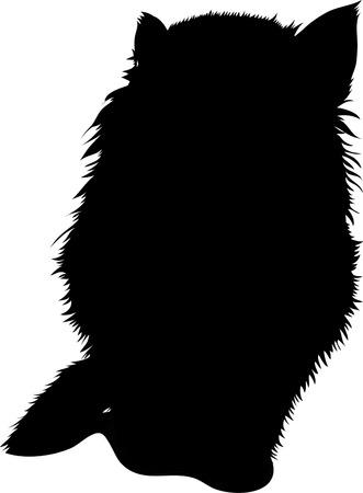Black silhouette of cat. Vector illustration. Ilustrace