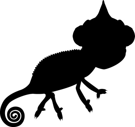 chamaeleo: Silhouette chameleon