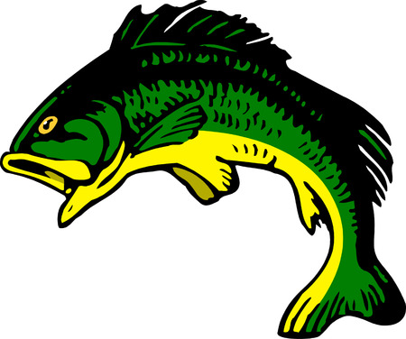 spawning: Fish. Vector. Illustration
