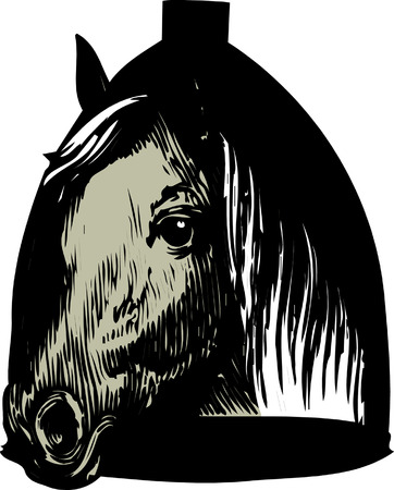 horse head vector illustration Vector