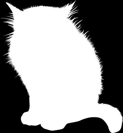 Silueta de gato blanco