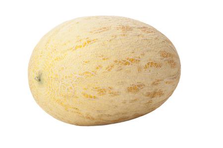 melon isolated on white background
