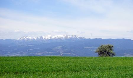 monta�as nevadas: monta�as nevadas en Turqu�a