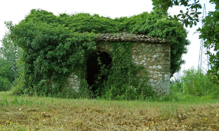 overgrown: abandoned house overgrown with greenery Stock Photo