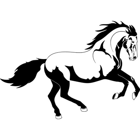 the year of the horse: Horse contour