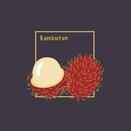 thai dessert: Hand drawing rambutan with slice on dark background. Cartoon icon, flat design, isolated object. Vector illustration.