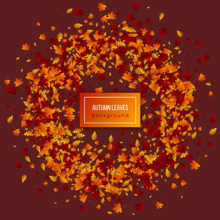 Autumn leaves on dark background.
