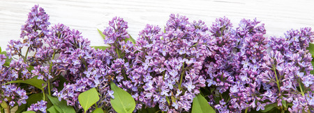 A bouquet of lilac flowers on a white wooden surface, top view. Imagens