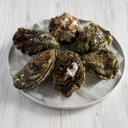 Fresh oysters on ice on a plate over white wooden background, side view. Close-up.