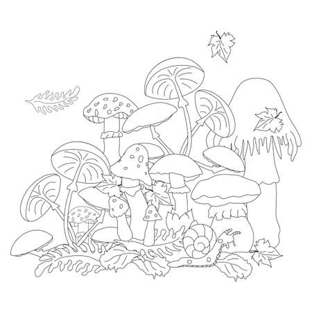 Poisonous mushrooms in a clearing among the foliage that look very attractive. A snail slowly creeping past. Zenart. Anti-stress coloring.. Illustration