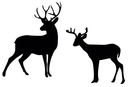 silhouette de cerf sur fond blanc