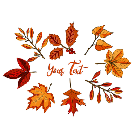 Autumn illustration for greeting cards, wedding invitations, quote and decorations.autumn leaves on the white background