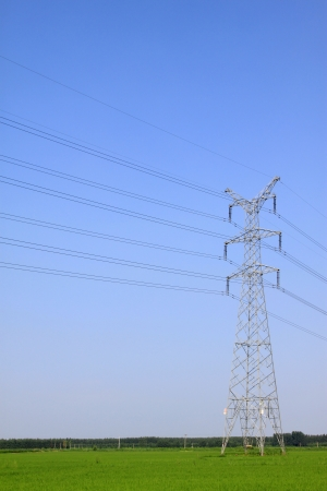 crops and electric tower under the blue sky, North China Plain, China photo