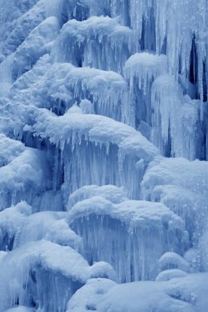 野生では、北中国の山脈の氷秋