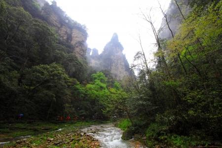Golden Whip brook scenery in Zhangjiajie National Geological Park, Hunan, China Stock Photo - 18864381