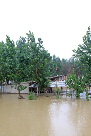 Buildings and trees in the flood on August 2, 2012, Luannan, Hebei, China    Stock Photo - 19009965