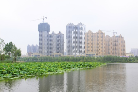 large lotus and high rise buildings in a park, north china