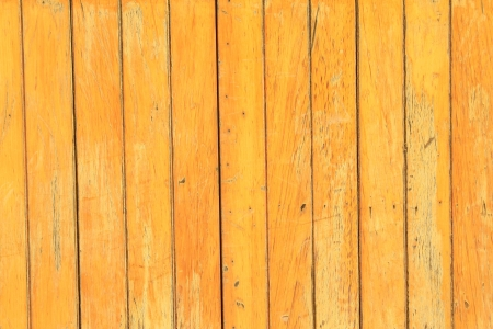 closeup of wood board in a park on the platform Stock Photo - 23366772