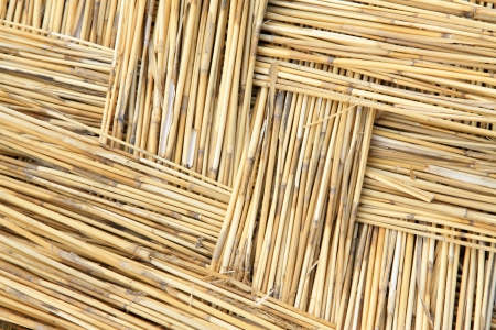 reeds curtain texture feature, closeup of photo Stock Photo - 23367056
