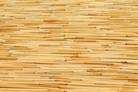 reeds curtain texture feature, closeup of photo Stock Photo - 23523378