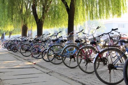 側道、北中国の柳の木の下に自転車