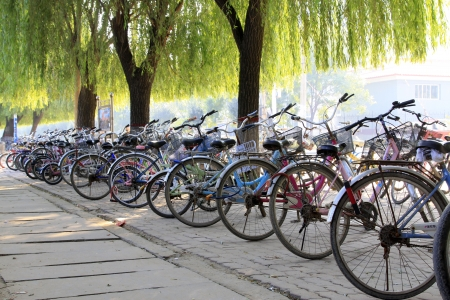 bike under willow tree on side of the road, north china Editorial