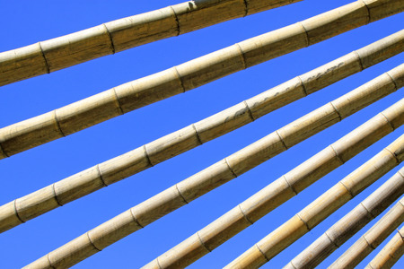 ribbed: dry bamboo stacked together in the blue sky Stock Photo