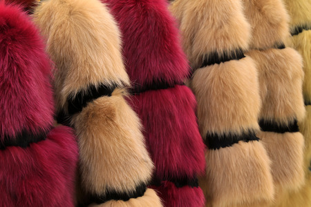 Well-organized fur clothing in a shop, north china Stock Photo - 26298755