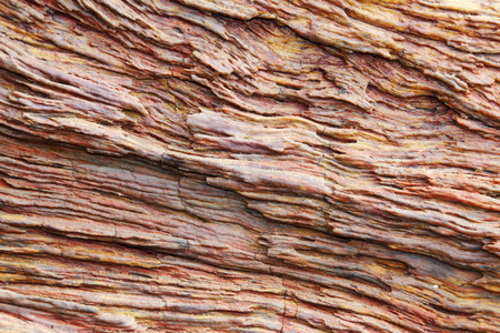 peculiar: tree fossil texture, peculiar natural landscape, china Stock Photo