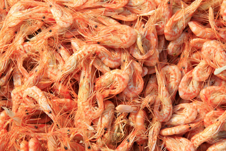 dried krill in the market, closeup of photo