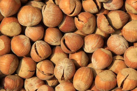 desiccation: hazelnut in a shop, closeup of photo Stock Photo