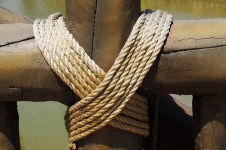 bundling: wood and rope in a park, closeup of photo