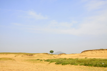 desertification: desertification grassland in the WuLanBuTong grassland, Inner Mongolia autonomous region, China.