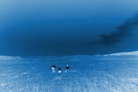 WuLanBuTong grassland scenery, closeup of photo photo