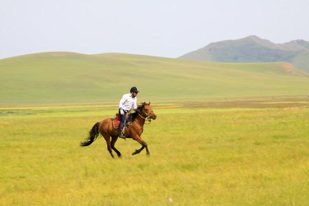 WULANBUTONG GRASSLAND - JULY 19: Speeding horse and knights in the WuLanBuTong grassland, on July 19, 2014, Inner Mongolia autonomous region, China.
