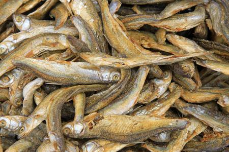 aquatic products: Dried fish, closeup of photo