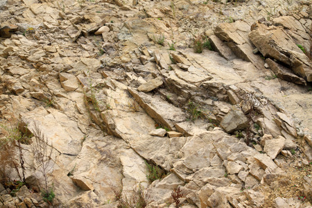 swelled: Brown rock texture, closeup of photo